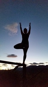 Tree_Pose_Silouette_Ginger_Ki_Yoga_300